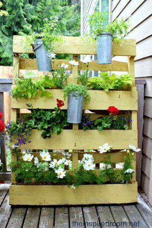 Plants-in-a-pallet-e1338256073944